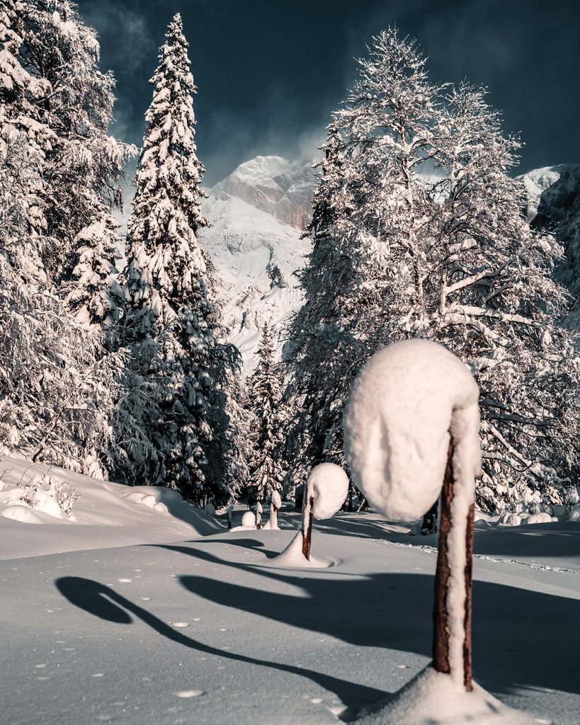 Ein winterliches Bild bei viel Schnee