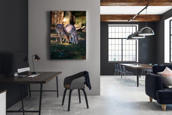 Das Bild für Ihren Warteraum, Ihr Büro oder Ihr Wohnzimmer.