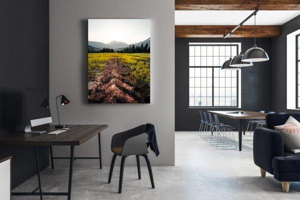 Bilder für meine Büros und Warteräume von Lukas Klima.
